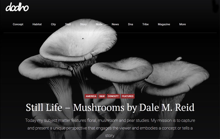 dale m reid contemporary fine art photography. Dodho Online Magazine