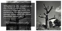 Dale M. Reid Photography. Creative Philosophy