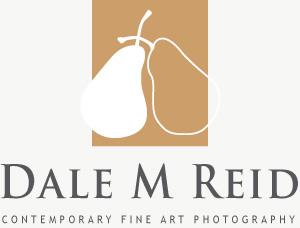 Dale M. Reid Photography