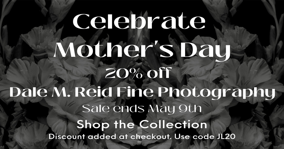 Dale M. Reid. Contemporary Fine Art Photography. Mothers Day Sale 2021.
