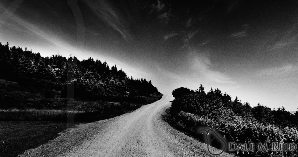 Dale M. Reid Photography. Road To The Sky. 2005. Landscape detail